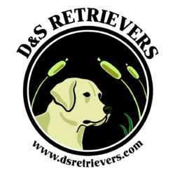DS Retrievers